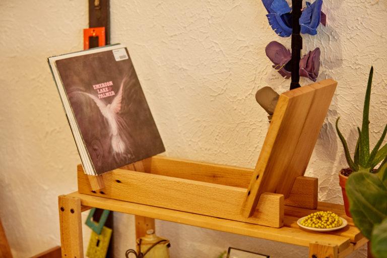 Record Display Organizer